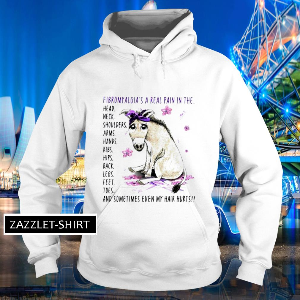 Fibromyalgia's a real pain in the whole body Hoodie